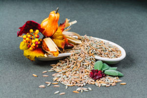 autumn_harvest_orzo_3